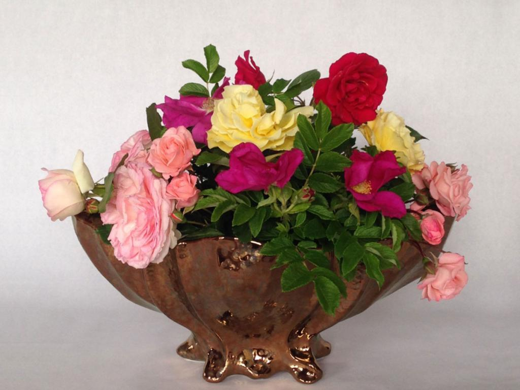 roses in a bowl, ME VA BR GO